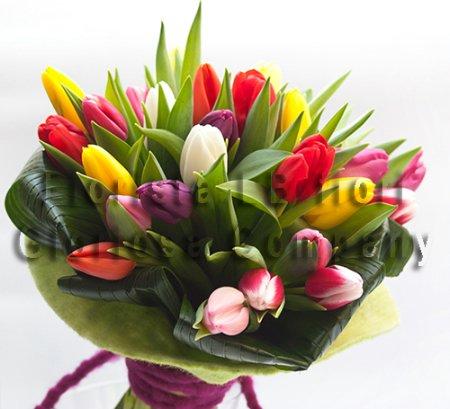 Mazzo Di Fiori Online.Bouquet Di Soli Tulipani Consegna Fiori Online A Domicilio