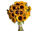 BOUQUET OF JUST SUNFLOWERS